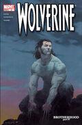Wolverine Vol 3 4