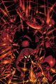 Amazing Spider-Man Vol 2 42 Textless.jpg