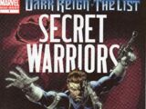 Dark Reign: The List - Secret Warriors Vol 1 1