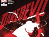 Daredevil Vol 6 12