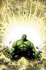 Incredible Hulks Vol 1 635 Pelletier Variant Textless