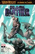 Black Panther Vol 7 10