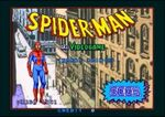 Spider-Man (1991 video game)