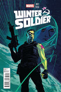 Winter Soldier Vol 1 17 Variant