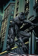 T'Challa (Earth-616) from Black Panther Annual Vol 2 1 001
