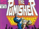 Punisher: War Zone Vol 1 29
