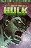 Hulk Visionaries Peter David Vol 1 3