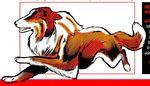 Marvel Pets Handbook Vol 1 1 page 30 Blaze (Dog) (Earth-616)