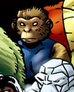 Elizabeth Braddock (Earth-8101) from Marvel Apes Vol 1 2 001