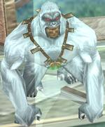 M'Baku (Earth-6109) from Marvel Ultimate Alliance 2 0003