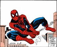 Spider-Man Newspaper Strips Vol 1 2010