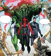 Brotherhood of the Shield (Earth-616) from Red She-Hulk Vol 1 67 001