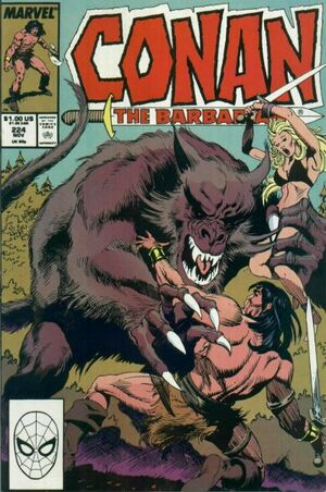 Conan the Barbarian Vol 1 224