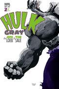 Hulk Gray Vol 1 2