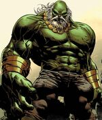 Bruce Banner (Earth-TRN794) from Old Man Logan Vol 2 26 cover 001