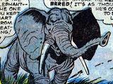 Rajah (Elephant) (Earth-616)