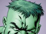 Bruce Banner (Earth-12)