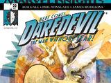 Daredevil Vol 2 22