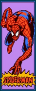 Peter Parker (Earth-TRN332) from Spider-Man (1991 video game) 001