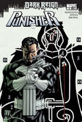 Punisher Vol 8 2