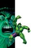 Generations Banner Hulk & The Totally Awesome Hulk Vol 1 1 Fried Pie Exclusive Variant Textless