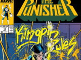Punisher Vol 2 14