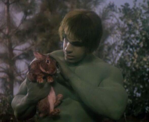 File:David Banner (Earth-400005) from The Incredible Hulk (TV series) Season 2 12 001.jpg