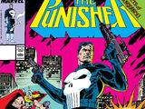 Punisher Vol 2 29