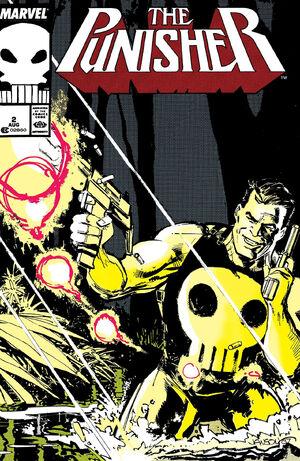 Punisher Vol 2 2