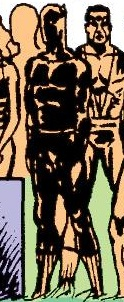 T'Challa (Earth-90659) from Avengers West Coast Vol 2 59 001