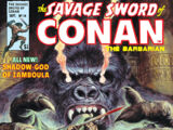 Savage Sword of Conan Vol 1 14