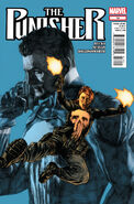 Punisher Vol 9 14