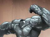 Bruce Banner (Earth-295)