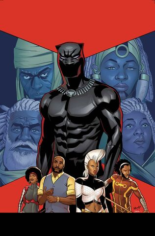 File:Black Panther Vol 6 13 Story Thus Far Variant Textless.jpg