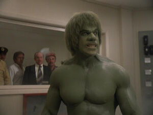 David Banner (Earth-400005) from The Incredible Hulk (TV series) Season 4 5 001