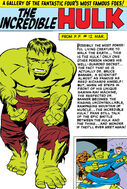 Bruce Banner (Earth-616) from Fantastic Four Annual Vol 1 1 001