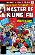 Master of Kung Fu 45