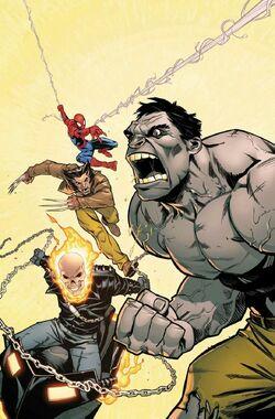 Black Panther Vol 1 170 Hulk Variant Textless