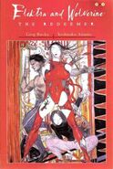 Elektra and Wolverine The Redeemer Vol 1 3