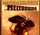 Havok and Wolverine Meltdown Vol 1 4