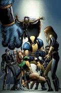 Wolverine Vol 3 25 Textless