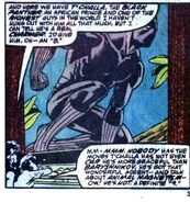 T'Challa (Earth-616) from Avengers West Coast Annual Vol 1 4 0001
