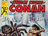 Savage Sword of Conan Vol 1 24