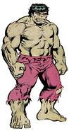 Bruce Banner (Earth-616) from Official Handbook of the Marvel Universe Vol 1 5 0001