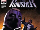 Punisher Vol 12 11