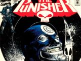 Punisher Vol 2 102