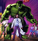 Bruce Banner (Earth-20051) from Marvel Adventures Hulk Vol 1 1 001