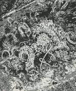 Dagon (Deity) (Earth-TRN672) from Savage Sword of Conan Vol 1 176 0001