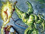 Fantastic Four (Earth-12091)