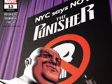 Punisher Vol 12 13